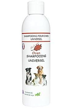 Feuille rouge - Shampooing pour Chien a l'Aloe Vera - 250 ml - approuve par les Toiletteuses.