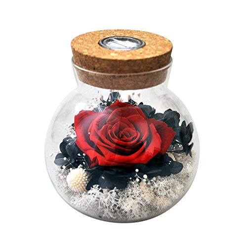 Forever Red Rose, Preserved Eternal Real Flower Present Gorgeous Led Mood Light, Best Gift for Birthday, Anniversary, Valentine's Day, Christmas, Thanksgiving Day- (Skyfire)