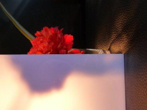 Polycarbonat Platte 600 x 500 x 2 mm Milchglas 30 % Lichtdurchlässigkeit Zuschnitt alt-intech®