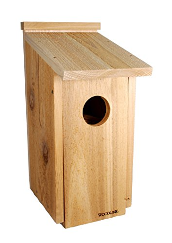 Woodlink Eule/Kestrel Screech House