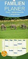 Esel - liebenswerte Langohren - Familienplaner hoch (Wandkalender 2022 , 21 cm x 45 cm, hoch): Ein Portrait ueber Esel, die liebenswerten Langohren. (Monatskalender, 14 Seiten )
