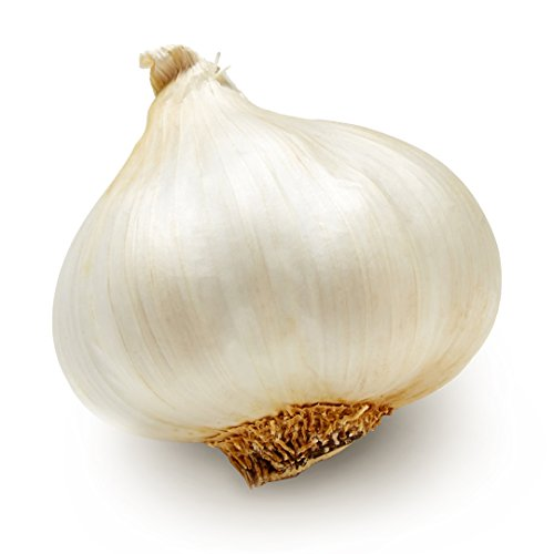 Medium Garlic, One Bulb
