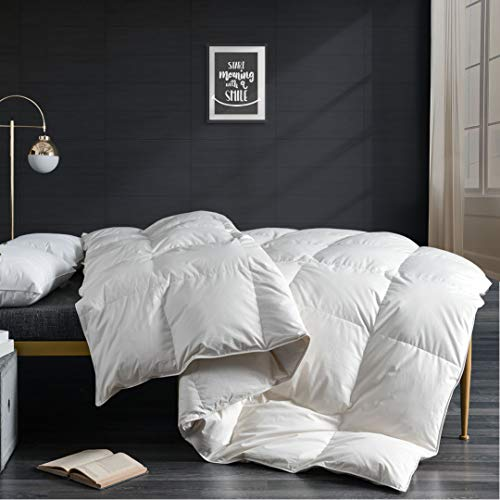 APSMILE 100% Organic Cotton Goose Down Comforter Queen Size - All Seasons 750FP Medium Weight Luxurious Duvet Insert, Ivory White