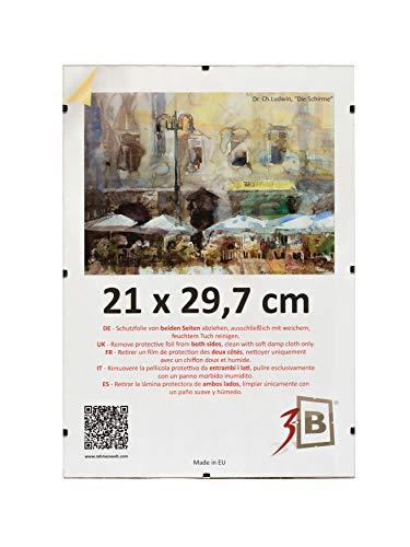 3B Set di 5 Pezzi Cornici a Giorno Clip 21x29,7 cm (A4) - Portafoto Senza Cornice con Vetro stirene