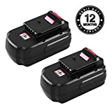 Replace Porter Cable 18V Battery for PC18B Battery PCC489N PCMVC PCXMVC Cordless Tool Battery 2-Packs