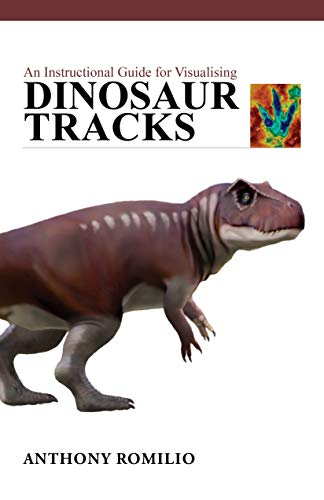 An Instructional Guide for Visualising Dinosaur Tracks (English Edition)