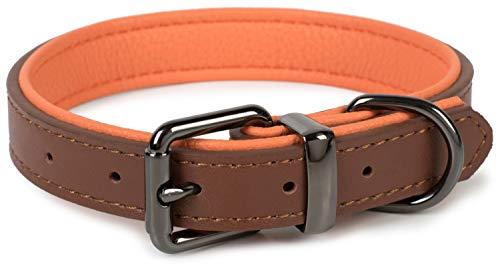 Puccybell Hundehalsband 2 farbig mit Leder, klassisches Halsband in Kontrastfarben für kleine, mittelgroße und große Hunde HB004 (M, Braun)