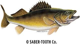 walleye decals for boats