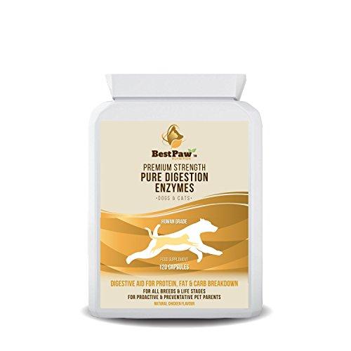 Best Paw Nutrition Enzimas digestivas para Perros y Gatos: Ayuda a los trastornos digestivos y a Perder Las heces en los Perros