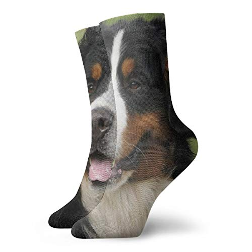 WEEDKEYCAT Bernese Mountain Dog Adult Short Socks Cotton Gym Socks for Mens Womens Yoga Hiking Cycling Running Soccer Sports