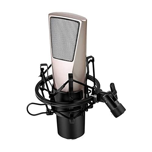 HUIXINLIANG Microfono Micrófono,20Hz-20KHZ con Condensador Metal Cardioid Metal Kit con CHIPSET Profesional...