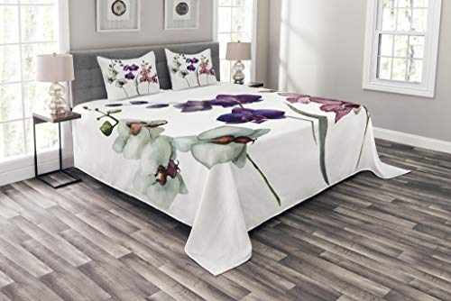 Lunarable Watercolor Flower Bedspread, Different Orchid Flowers on Clear Background Exotic Blooms, Decorative Quilted 3 Piece Coverlet Set with 2 Pillow Shams, Queen Size, Rose Purple
