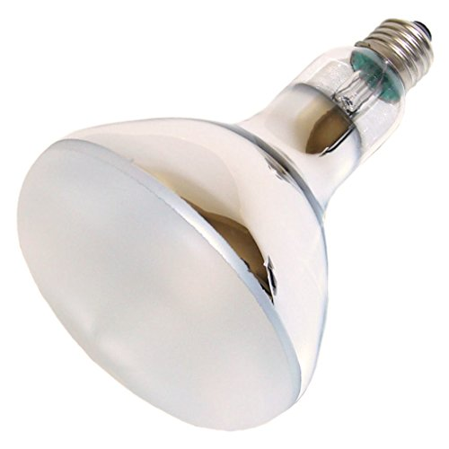 OSRAM P10650009 Ultra Vitalx Technical UV-Lampe, E27-Basis, 300 Watt