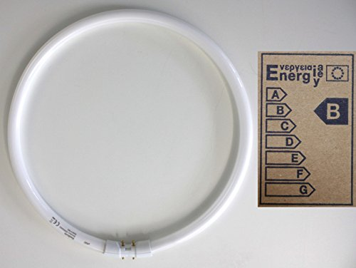Radium - Bonalux NL - T5, 40 Watt, 840 C, Durchmesser 16 mm, weiß, 3200 Lumen, Leuchstofflampe, Ringlampe, Sockel 2GX13, Lebensdauer ca. 12000 h, Energieeffiziensklasse B, EAN 4008597132346