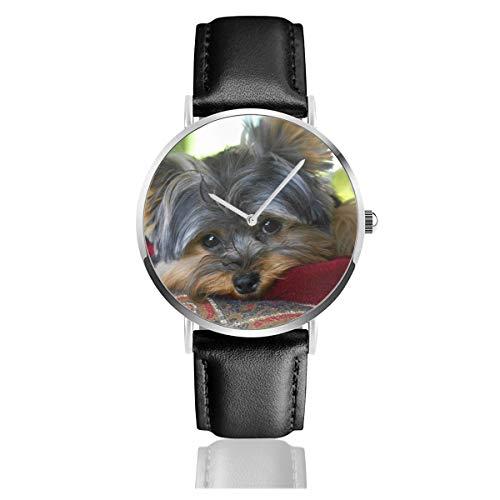 Montre à quartz classique et décontractée en acier inoxydable avec cadran de chien Yorkshire Terrier
