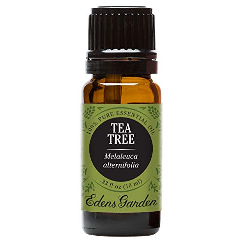 Edens Garden Tea Tree Essential Oil, 100% Pure Therapeutic Grade (Undiluted Natural/Homeopathic Aromatherapy Scented Essential Oil Singles) 10 ml