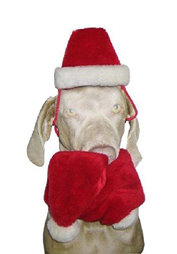 Sandy - Set écharpe/bonnet noël chien