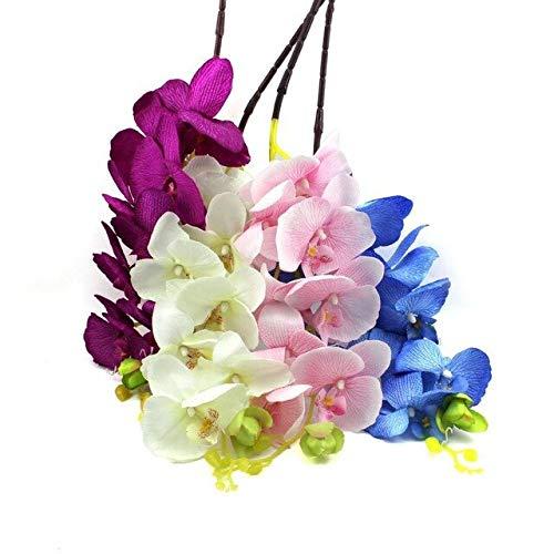 RETS 100pcs Sommer Orchidee s Bunte Balkon Bonsai Topf Seltene Blumen-Geschenk für Hausgarten-Farm Orchideen Keimlinge: Grün