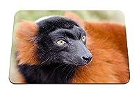 26cmx21cm マウスパッド (キツネザルキツネザルマズル鼻) パターンカスタムの マウスパッド