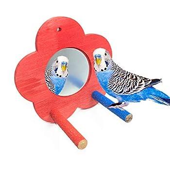 Nynelly 2pcs Perroquet Bois Perché Plateforme, Plus 1pcs Miroir avec Perchoir en Bois pour Oiseau,Perchoir d'Oiseau Debout Support pour Petits Animaux, Perruche Hamster Cage Accessoires