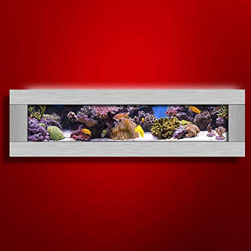 Aussie Aquariums 2.0 Wall Mounted Aquarium - Panoramic - Silver Stainless Steel