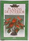 Cómo Seleccionar Y Cuidar Plantas De Interior