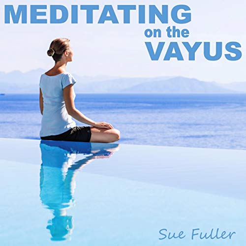 Meditating on the Vayus cover art