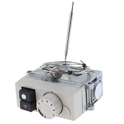 PUGONGYING Popular Válvula de termostato de Control de Gas Ajuste para Horno de freidora y más de 120-200  50 MBAR Válvula de Gas Durable