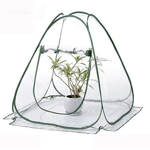 beautygoods gewächshaus klein überwinterungszelt für Pflanzen gewächshaus blumentopf gewächshaus Pflanzen Mini gewächshaus winterschutz für Pflanzen Greenhouse