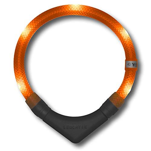 LEUCHTIE® Leuchthalsband Plus Sunset-orange Größe 52,5 I LED Halsband für Hunde I 100 h Leuchtdauer I wasserdicht I enorm hell