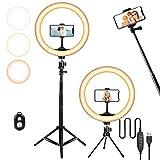 10.2in Selfie Ring Light 2 Tripod Stand 63in and 5.5in , CORNMI USB