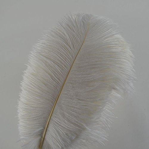 Crenze 10pcs Ostrich Feathers 12-14inch(30-35cm) for Home Wedding Decoration Offers 10 Colors