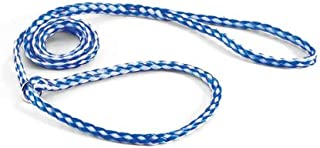 Downtown Pet Supply Kennel Slip Lead - Braided Polyethylene - Light Blue