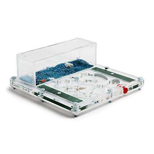 AntHouse - Hormiguero Acrílico - Kit Educativo Espuma 15x15x1,3 cm (Hormigas Gratis)