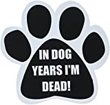 'In Dog Years I'm Dead!' Car Magnet With Unique Paw Shaped Design Measures 5.2 by 5.2 Inches Covered In UV Gloss For Weather Protection
