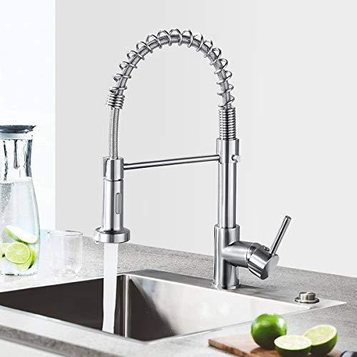 Küchenarmatur Wasserhahn mit Brause, 360° schwenkbar Spültischarmatur, Mischbatterie aus Edelstahl, Einhebelmischer Spültischbatterie (Silber)