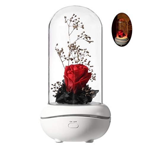 Dengheng LED-Lampe für Aromatherapie, Aromatherapie, ätherisches Öl, Diffusor, Geburtstagsgeschenk rot