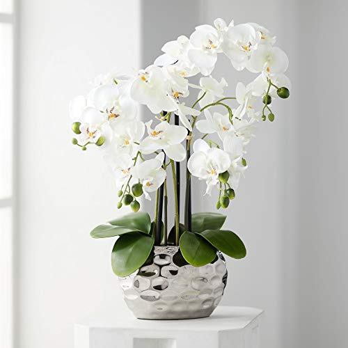 Orchid in Silver Pot