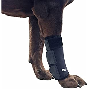 Customer reviews Labra Dog Canine Front Leg Compression Wrap Sleeve Protects Wounds Brace Heals and Prevents Injuries and Sprains Helps with Loss of Stability Large/Extra Large