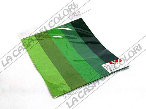Rayher 7137400 Papier-Set DIN A3 Grün-Töne, SB-Btl. 5 Stück verschiedene Farbtöne