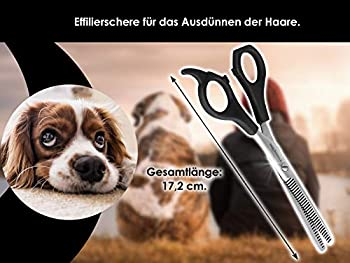 hundehaarschere Ciseaux Ciseaux à effiler Grooming Deluxe Toilettage