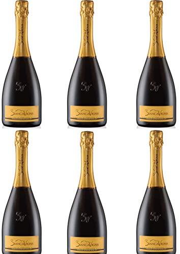 Sekt - 6 Flaschen x 0,750 l. -Conegliano Valdobbiadene D.O.C.G. Extradry Prosecco Superiore Millesimato - BiancaVigna