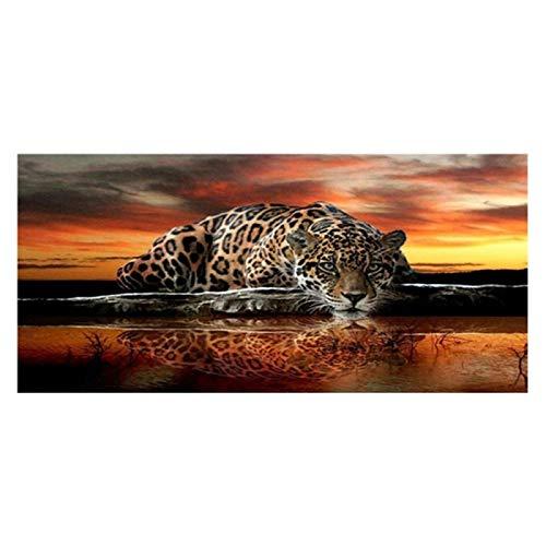 5D Pintura Diamante Kit, DIY Diamond Painting Leopardo Redondo/Cuadrado Cristal Diamante Bordado Pinturas Artes kit de Punto de Cruz Para Decoración de la Pared del Hogar 30x60cm