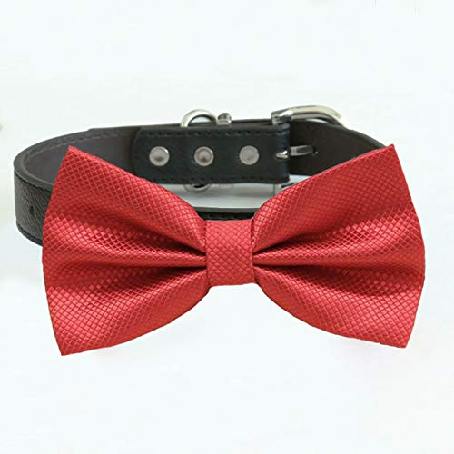 Red bow OFFicial store Recommendation tie collar dog of ring XS XXL honor to bearer