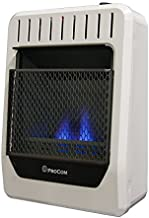 ProCom Heating Ventless INC MGH10BF 10,000 BTU Dual Fuel Blue Flame Gas Wall Heater, Medium, White