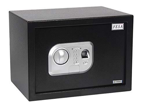 Fesa - Caja Fuerte Electrónica de huella digital, biométrica 250x350x250, 16 litros