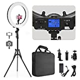 Ring Light, Pixel 19' Bi-Color LCD Display Ring Light with Stand, 55W 3000-5800K CRI≥97 Light Ring for Vlogging Selfie-Portrait Live Stream Video Photography Shooting