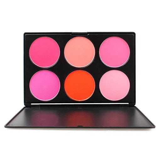 FantasyDay® 6 Couleurs Palette de Maquillage Blush Fard à Joues Poudre Cosmétique Set - Convient Parfaitement pour une Utilisation Professionnelle ou à la Maison