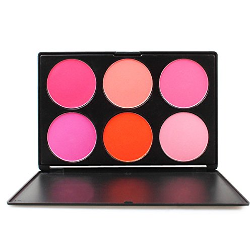 PhantomSky 6 Couleurs Palette de Maquillage Blush Fard à Joues Poudre Cosmétique Set - Parfait pour une utilisation professionnelle et quotidienne
