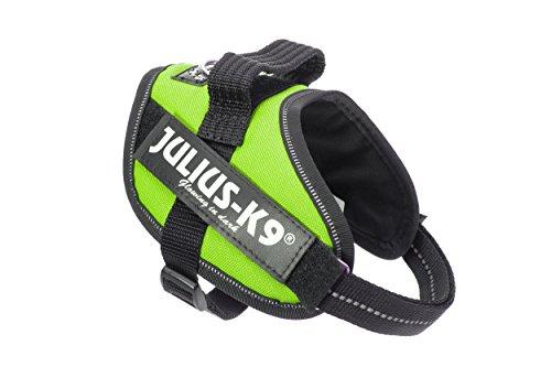 Julius-K9 16IDC-KW-MM IDC Powerharness, Dog Harness, Size Mini-Mini, Kiwi
